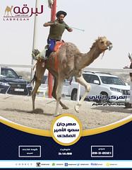 سباق الهجن التراثي (شوط الاتحاد العربي) بمهرجان سمو الأمير المفدى 28-3-2021