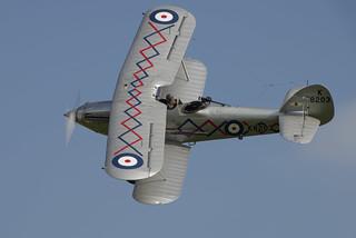 Hawker Demon.