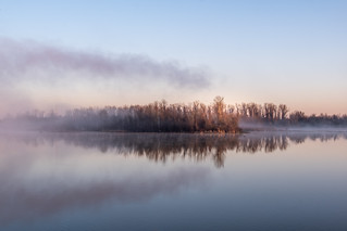 FUJI3038-Fog.jpg