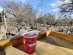 Having a Beer at the Tackle Box at The Shacks at Austin Ranch