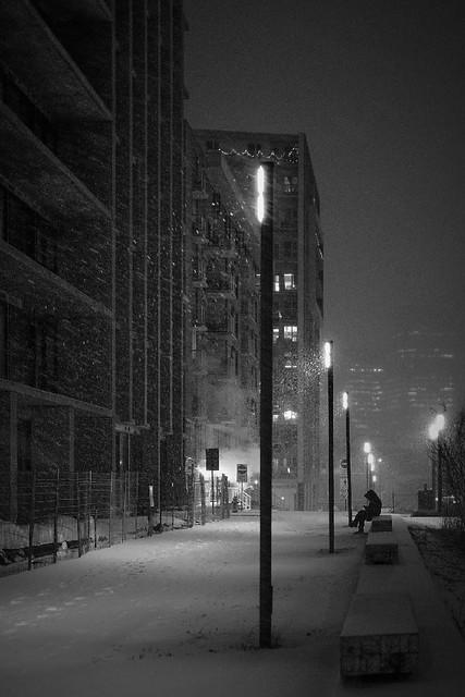 En paix sous la neige