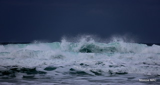 Frothy swell