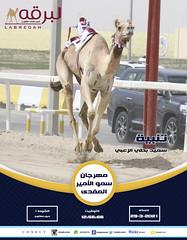 سباق الحيل والزمول (أشواط عامة) بمهرجان سمو الأمير المفدى - مساء 29-3-2021