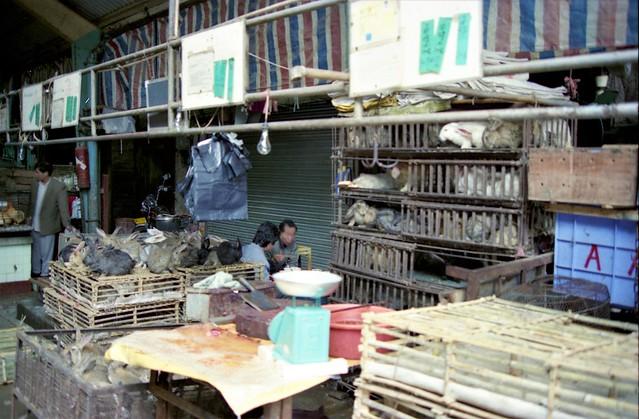 Guangzhou Wet Market