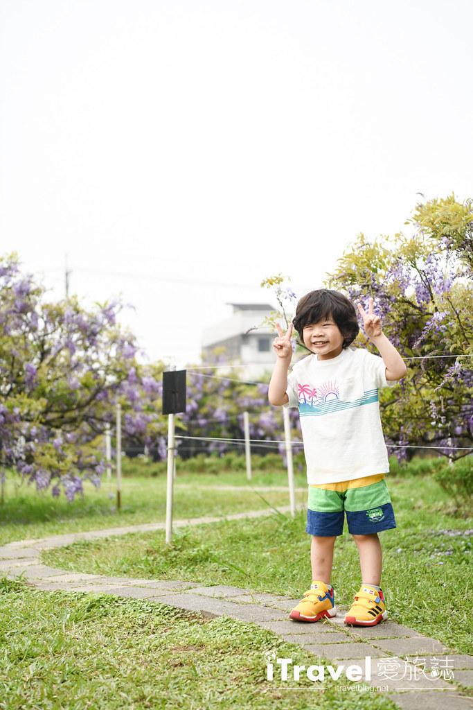紫藤咖啡園 Damshui Wisteria (49)