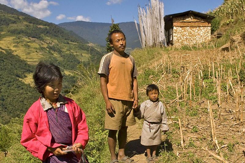 Bauergehöft im grünen Reisfeld