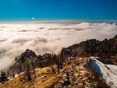 Alpi e prealpi carniche 2021