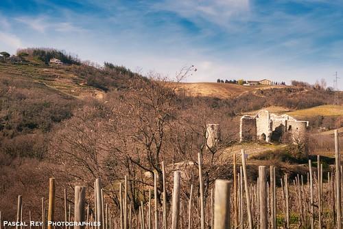 Parmi le vignoble de Crozes-Hermitage, le Château de Larnaggio.
