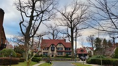 Mansion & Trees