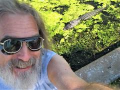 selfie with alligator