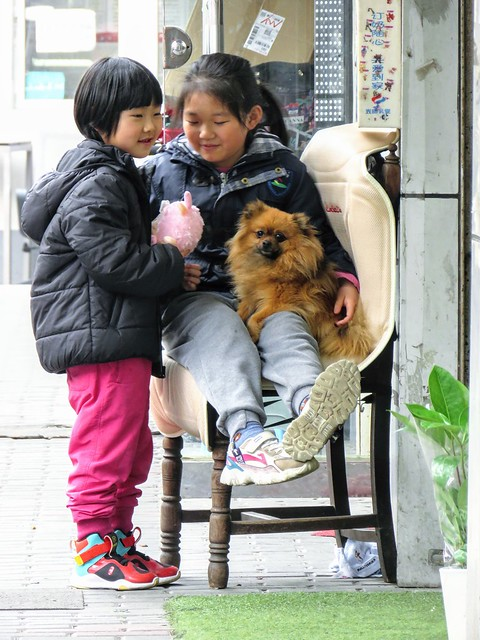 Girls and dog