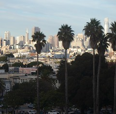 San Francisco skyline as viewed from Dolores Park