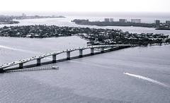 Sarasota Ringling bridge