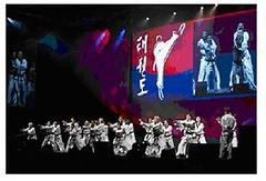 2009-07-08演講-扶輪分享-世界年會