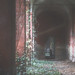 |URBEX| Ex Manicomio S.B. -Pt.6-