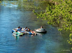 Floating the San Marcos River.