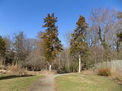 Green Spring Gardens, VA