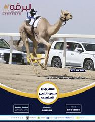 سباق الحقايق (أشواط عامة) بمهرجان سمو الأمير المفدى - مساء 21-3-2021
