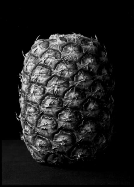 Paper Negative Pineapple