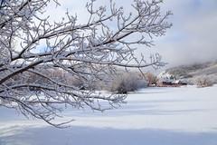 IMG_9396 White Pine Nordic Center
