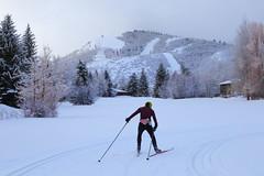 IMG_9347 Cross Country Skiing