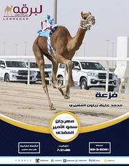سباق اللقايا (الرموز الفضية) بمهرجان سمو الأمير المفدى - مساء 23-3-2021