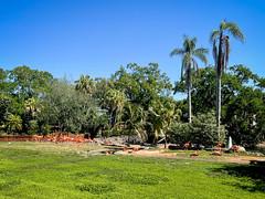 3.7.2021_iPhone12pro_busch_gardens.09