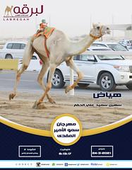 سباق الجذاع (أشواط عامة) بمهرجان سمو الأمير المفدى - صباح 24-3-2021