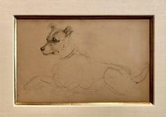 Polk Museum, Toulouse-Lautrec & the Belle Époque