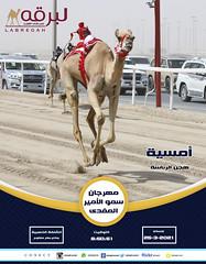 سباق الجذاع (الرموز الذهبية) بمهرجان سمو الأمير المفدى - مساء 25-3-2021