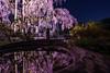 Photo:太山寺(栃木県栃木市) By colovin86