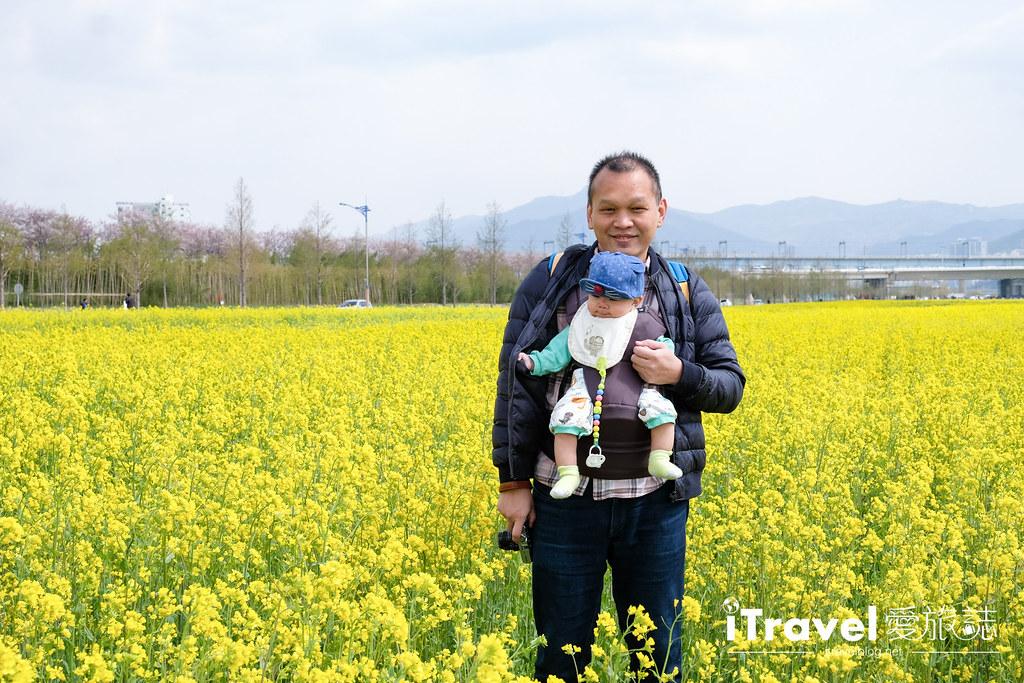 大渚生態公園 Daejeo Ecological Park (15)