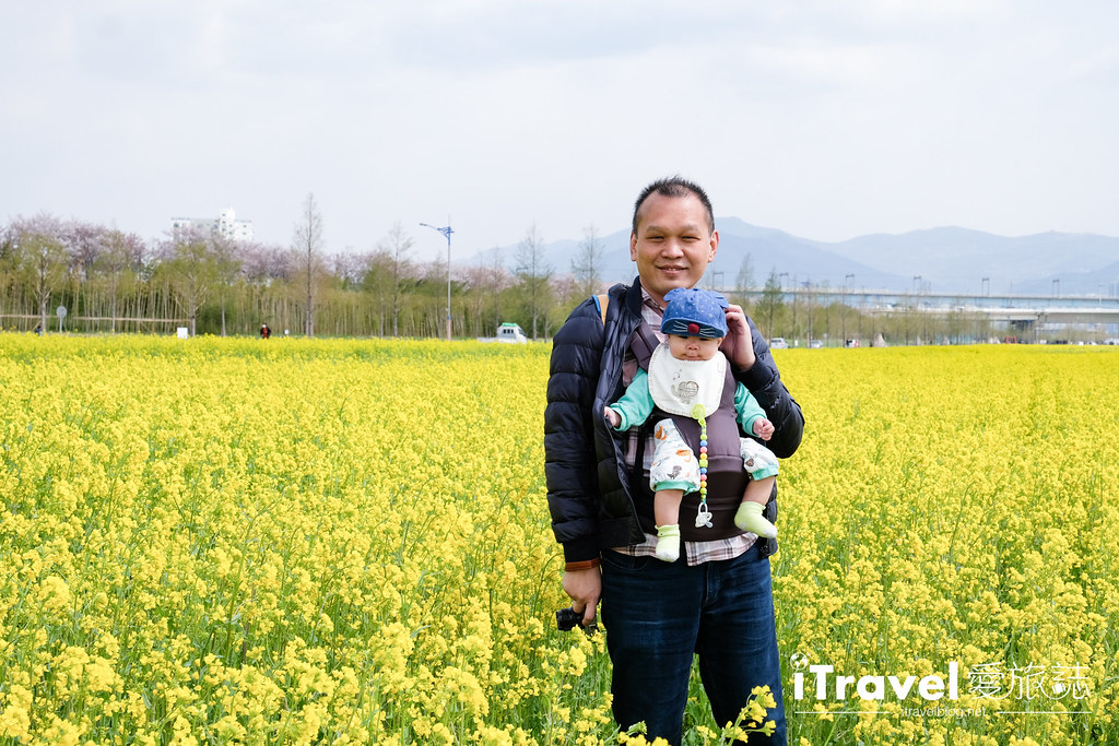 大渚生態公園 Daejeo Ecological Park (14)
