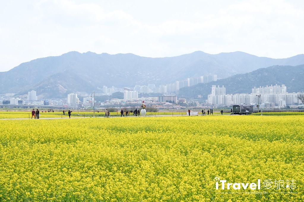 大渚生態公園 Daejeo Ecological Park (6)