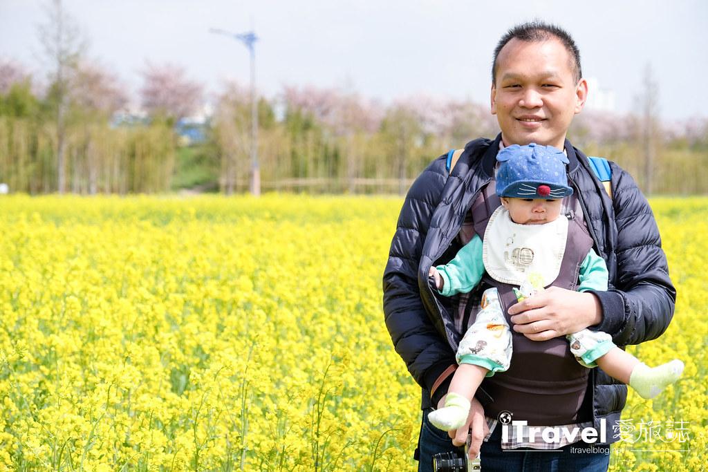 大渚生態公園 Daejeo Ecological Park (16)
