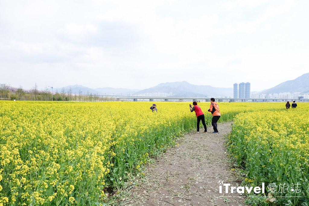 大渚生態公園 Daejeo Ecological Park (13)