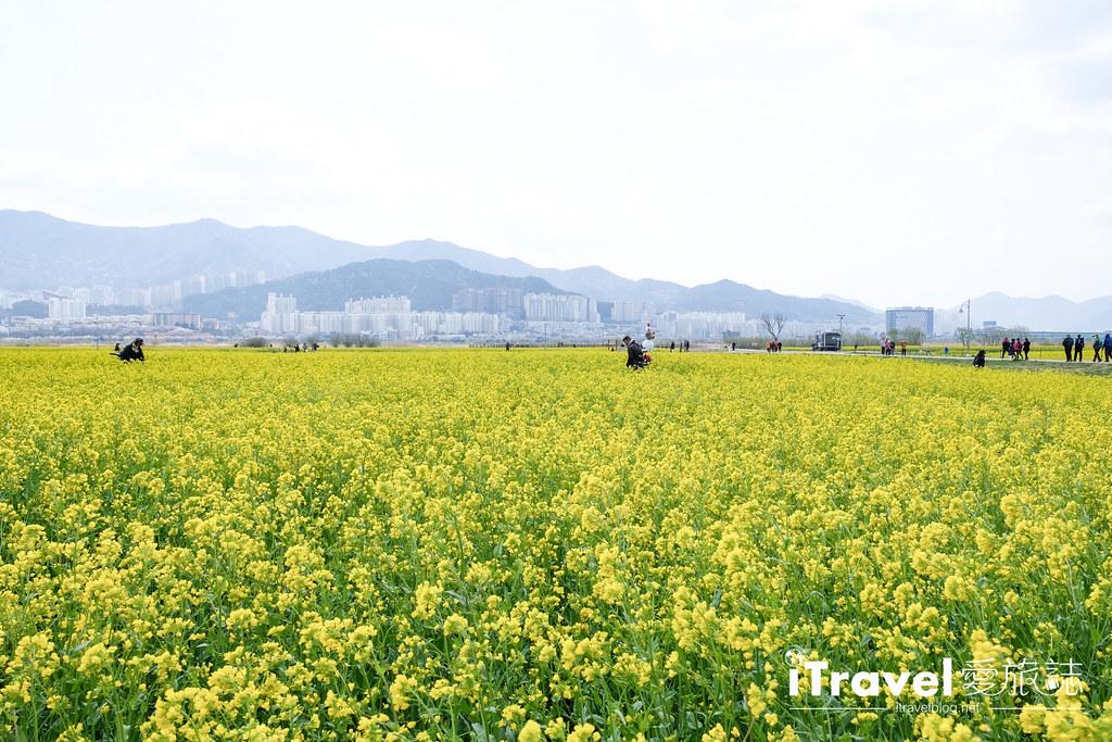 大渚生態公園 Daejeo Ecological Park (11)
