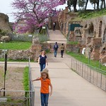 On The Palatine Hill - https://www.flickr.com/people/40646519@N00/