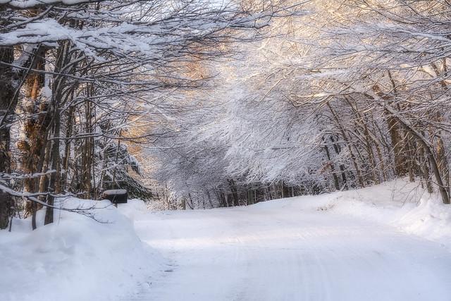 Chaleur hivernale