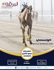 السباق الختامي للحيل والزمول (السيف الفضي) بمهرجان سمو الأمير المفدى