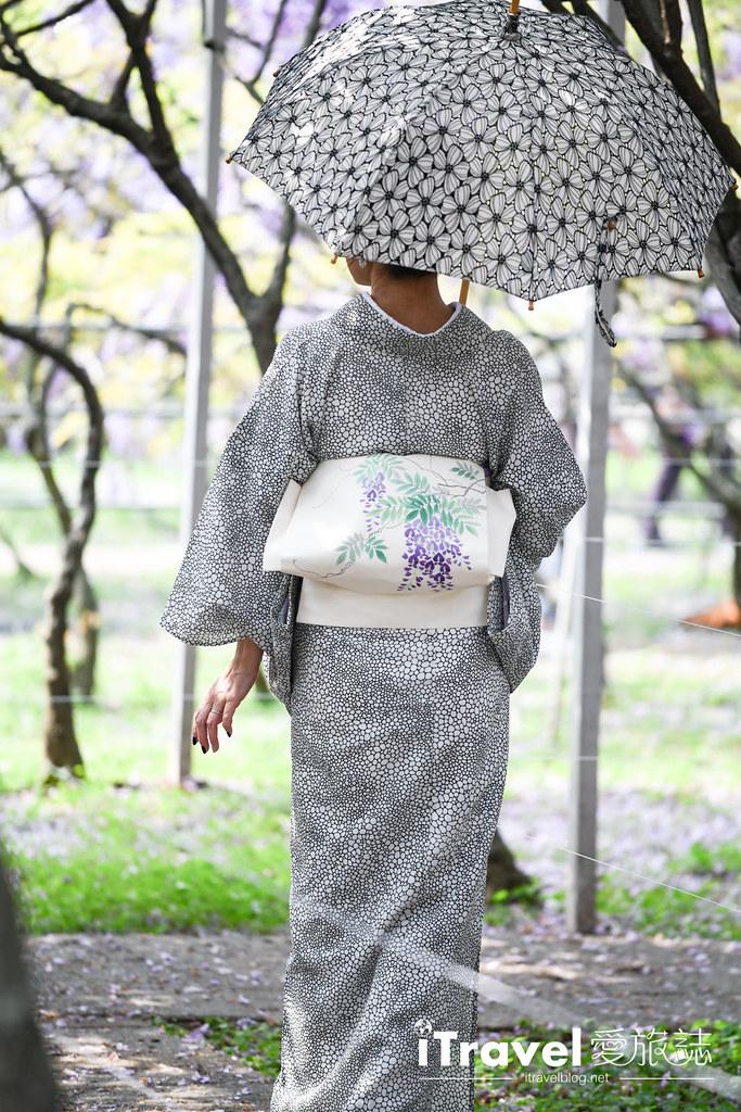 紫藤咖啡園 Damshui Wisteria (23)