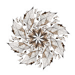 Holly leaf design