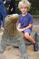 Everett On The Komodo Dragon