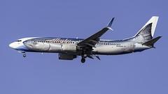 N559AS_JFK_Landing_31R_AS_B737_890_Salmon_Thirty_Salmon_II
