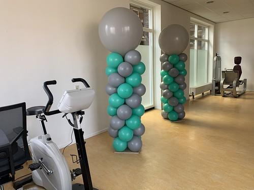 Ballonpilaar Breed Rond Fysiotherapie Invicta Sommelsdijk