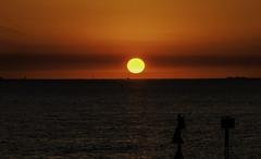 Mind-Blowing Breathtaking Stunning Tampa Bay Florida Sunset (SOOC) - IMRAN™