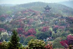 Guizhou 貴州 2021