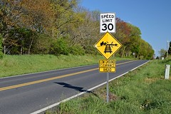 Speed limit and low ground clearance signs [01]