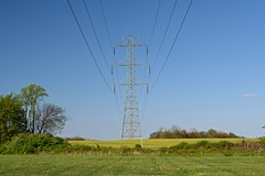 Power transmission lines in Frederick County [02]