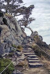 Stairways to presence
